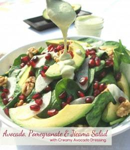 Avocado Pomegranate and Jicama Salad with Dressing labeled