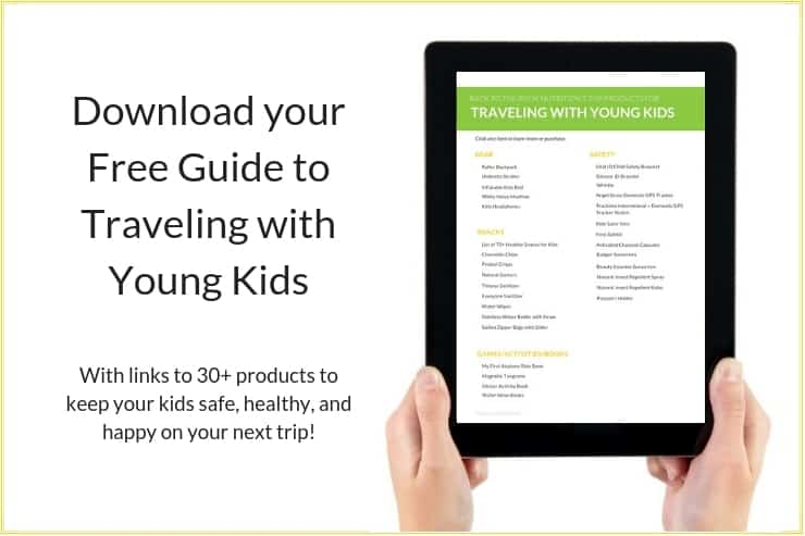 Click this image to download your Free Guide to Traveling with Young Kids
