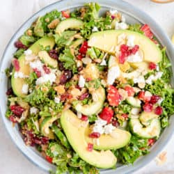 Overhead view of kale and quinoa salad in bowl with avocadoes, cranberries and almonds on white background