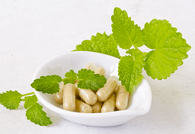 close up of lemon balm capsules in small white bowl with lemon balm leaves around it