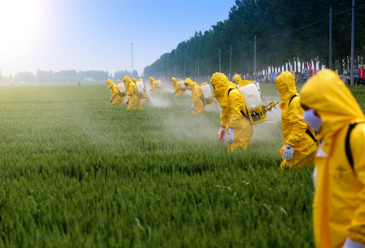 farm workers in protective gear spraying herbicides and pesticides